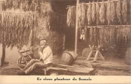 ROCHEHAUT-FRAHAN SUR SEMOIS PUB Maison F. Didot Tabac Le Vieux Planteur De SEMOIS - Publicité