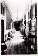 Beloeil            (Format 6X9 ) Château De Beloeil. La Galerie Des Portraits    . - Beloeil