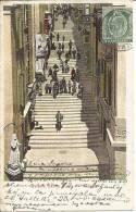 Strda Santa Lucia  Vallletta Malta   Post Card  1906 - Malte