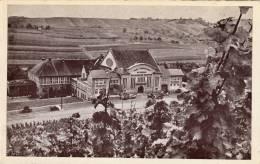 Cave Coopérative Des Vigneronss De Wellenstein S'Moselle - Postcards