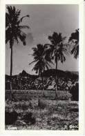 Guam, Buildings And Farm(?) On C1940s/50s Vintage Real Photo Postcard - Guam