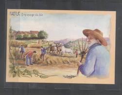 Carte Postale KABYLIE Depiquage De Ble - Bejaia (Bougie)
