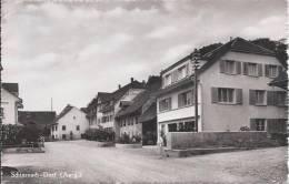 5290 - Schinznach-Dorf - AG Argovie