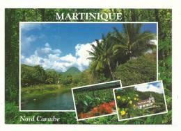 Cp, Martinique, Nord Caraïbe, Multi-Vues - Martinique