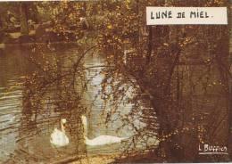 LUNE DE MIEL - LOUIS BUFFIER - N°97 - RARE - - Illustrateurs & Photographes