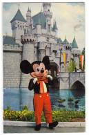 DISNEY OTHER WALT DISNEY CARTOON CHARACTERS MICKEY MOUSE OLD POSTCARD 1965. - Other