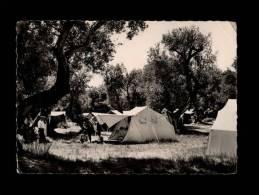 06 - ROQUEBRUNE - Les Terrains De Camping Du C.C.O.S. - 11-20 - Roquebrune-Cap-Martin