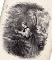 Partition Avec Superbe Gravure: Dormez Petits Oiseaux, Romance, Paroles De J. Bertrand, Musique D'Etienne Arnaud. - Scores & Partitions