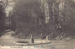 91 - Yerres : Sanatorium - Le Petit Bassin - Yerres