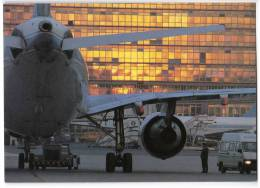 TRANSPORT AIRPLANE AIRBUS A310-300 SABENA BELGIAN WORLD AIRLINES BELGIAN BIG CARD OLD POSTCARD - 1946-....: Moderne