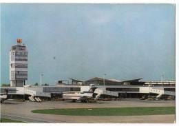 TRANSPORT AERODROME BEOGRAD YUGOSLAVIA BIG CARD OLD POSTCARD - Aerodrome