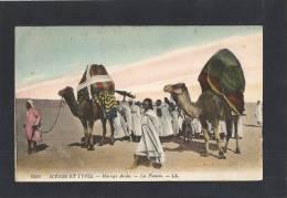 ► IB 451 - Scènes Et Types - Mariage Arabe - Les Fiancés - (Algérie) - Scènes & Types