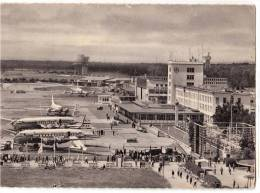 TRANSPORT AERODROME FRANKFURT AM MAIN RHEIN MAN GERMANY BIG CARD OLD POSTCARD 1953. - Aerodrome