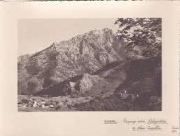 PHOTO Grande Qualité @ Paysage Entre BELGODERE Et OLMI CAPELLA ( Corse ) En 1936  @ N° 25 - Places