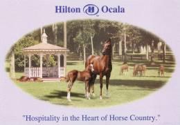 "Etats-Unis-Florida-HILTON OCALA ""Hospitality In The Heart Of Horse Country"" (horses Chevaux) Ocala´s Only Themed Hotel - Ocala"
