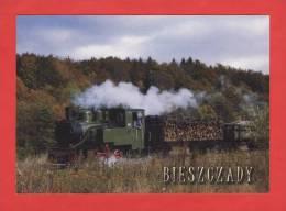 Poland - Bieszczady - Steam Locomotive Las 1884 --- 95t.kol - Trains
