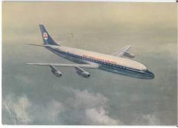 TRANSPORT AIRPLANE KLM'S DOUGLAS DC-8 INTERCONTINENTAL JET ROYAL DUTCH AIRLINES DENMARK BIG CARD OLD POSTCARD - 1946-....: Moderne