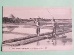 Marais Salants - La Récolte Du SEL - Zonder Classificatie