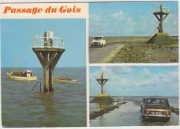 Passage Du Gois - Multiview:  RENAULT 4, 8 & 16 - Passenger Cars