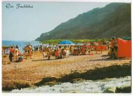 ASIA ISRAEL EIN FECHKHA NOTHERN SHORE OF THE DEAD SEA OLD POSTCARD - Israel