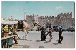 ASIA ISRAEL JERUSALEM OLD CITY VIEW NEAR DAMASCUS GATE Nr. 1105 OLD POSTCARD - Israel