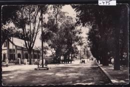 Fianarantsoa : L'avenue Besson Vers 1960 (-445) - Madagascar