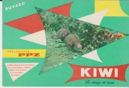 Buvard Cirage Kiwi - Blotters