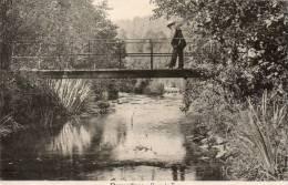 DAVERDISSE Pont De Fays - Daverdisse