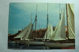 D 83 - Saint Tropez - Le Port - Saint-Tropez