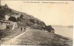 44 - Loire Atlantique - LE CELLIER - Tunel De La Saulzaie - Format  8,9  X  14 - Edit Chapeau - Nantes - Le Cellier