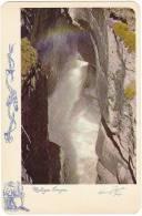 MALIGNE RIVER CANYON JASPER NATIONAL PARK ROCKY MOUNTAINS ALBERTA Vintage Harry Rowed Postcard Castor Beaver Tomahawk - Jasper