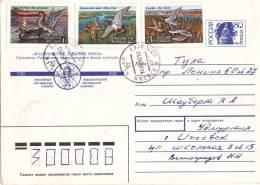 Cover Russia To Honduras 1992 ( Ducks 1992 Stamps) - 1992-.... Fédération