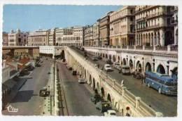 < Automobile Auto Voiture >> Autobus Car, Chausson Renault, Alger - Bus & Autocars