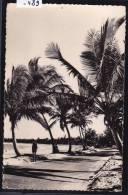 Madagascar - Tamatave : Bord De Mer (1957) (-489) - Madagascar