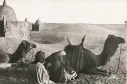 Sahara Coll. Sahariennes Apres L' Etape Une Pipe De Kif, Drogue, Mehariste, Touareg - Non Classificati