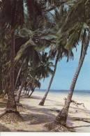 Diani Beach Kenya Coast - Kenya