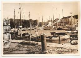 Loire Atlantique - 44 -  Le Croisic Le Port , Carte Photo Format Cpm - Le Croisic