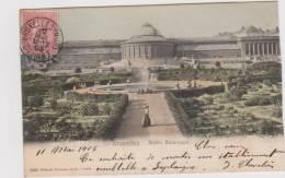 CPA  BRUXELLES   Jardin Botanique - Bossen, Parken, Tuinen