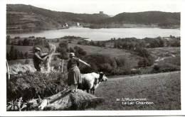 N° 26508 -cpsm L'Auvergne -le Lac Chambon- - Cultures