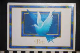 CP, Carte De Voeux , Colombe Symbole De Paix - Non Classés