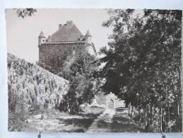 Carte Très Peu Courante - 39 - Environs De Lons Le Saunier - Le Château Du Pin - Entrée - Scan Recto-verso - Lons Le Saunier