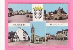PLOEUC (22) / CPSM Grand Format /  MULTIVUES / Souvenir De Ploeuc - France