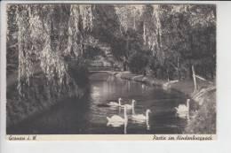 4432 GRONAU, Partie Im Hindenburgpark - Gronau