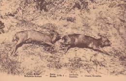 Belgian Congo Antilopes - Belgian Congo - Other