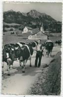 Estavannens. La Poya - FR Fribourg