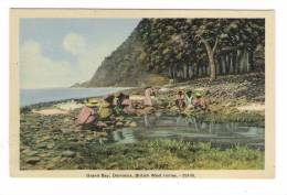 ÎLE  DE  LA  DOMINIQUE  /  DOMINICA  ( B.W.I. = British West Indies ) /  GRAND  BAY   ( Lavandières Locales ! ) - Dominica