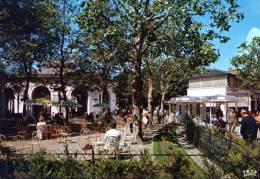 (D)  03.    ALLIER.VICHY.  Reine Des  Villes D'Eaux . La  Source De L'hopital - Vichy