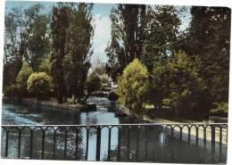 MONTIGNY-SUR-LOING / L´EGLISE VUE DU PONT - Autres Communes