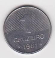 BRASIL  1 CRUZEIRO  1.981  Acero  KM#590  SC/UNC     DL-10.194 - Brasil