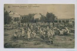 (I838) - Schoolvilla Diesterweg, Heide-Calmpthout - Achterzijde En Zandplein / ETAT - Kalmthout